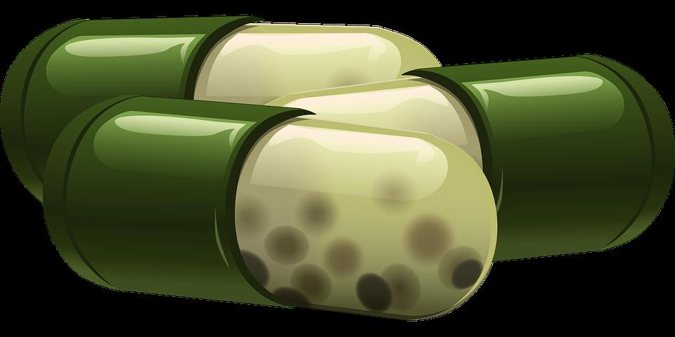 Darmflora bepaalt immuunsysteem