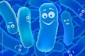 Probiotica bij herstel darmflora?!